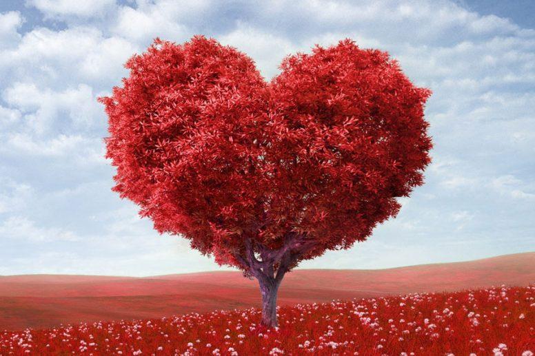 27 лет свадьбы Красное дерево годовщина