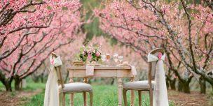 Свадьба в мае 2016 благоприятные дни