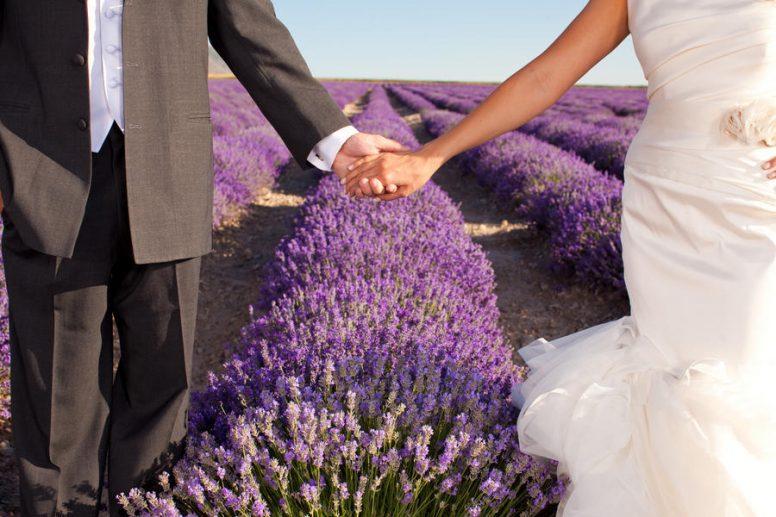 46 лет лавандовая годовщина свадьбы