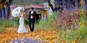 svadba 13 noyabrya