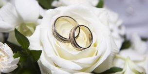 svadba-visokosniy-god