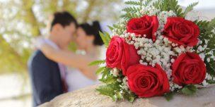 свадьба 24 июня