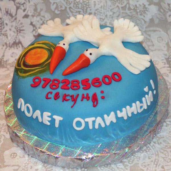 Торт аисты, где написана цифра секунд проживжих вместе
