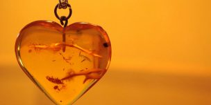 Поздравления на 34 годовщину Янтарной свадьбы