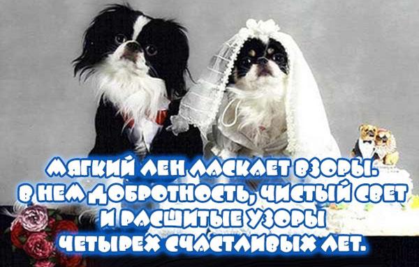 Открытка на льняную свадьбу собаки