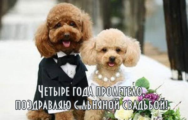 Открытка на льняную свадьбу 2 пуделя